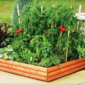 easymulch is great for vegetables