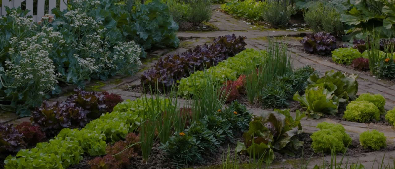 easymulch is great for fruit and vegetable gardens