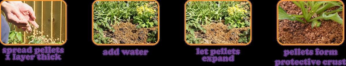 Slugless the Spiky Slug & Snail Deterrent from Organic British Straw