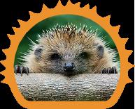 child, pet, bird & hedgehog friendly